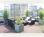 The Flatiron. Stunning Studio...Rooftop Deck....Very Low Fee!